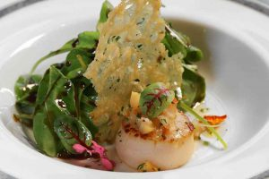 Scallop-Salad